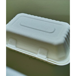 Biodegradable Compostable 9x6x3 Sugarcane Clamshell (200/case)