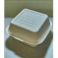 6x6x3 Sugarcane Hamburger Clamshell (500/case)