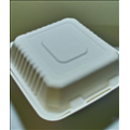 Biodegradable Compostable 8x8x3 Sugarcane Clamshell (200/case)