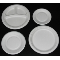 Sugar Cane Plates